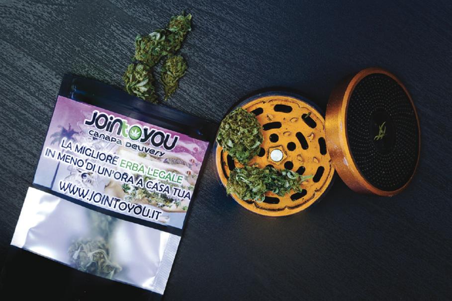 JoinToYou: la cannabis light arriva anche a Carpi e dintorni